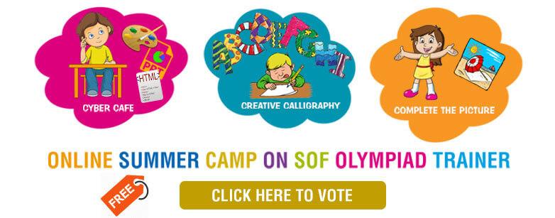 SOF Summer Camp